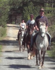 Pony trekking in South France