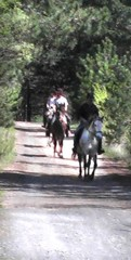 Horse riding in Languedoc Roussillon